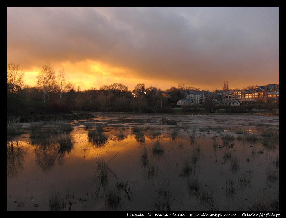 Louvain-la-neuve : lac, le 12 décembre 2010